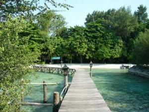 Pulau Alam Kotok