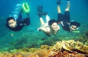 snorkling di pulau pramuka