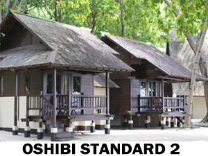 Pulau Ayer Room Oshibi