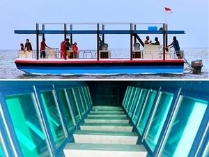 Pulau Putri Sheila Tour Wisata Harga Promo Murah Paket 2020